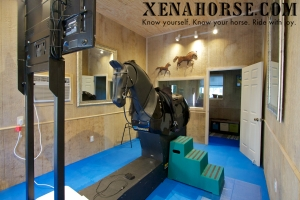 Xena Horse