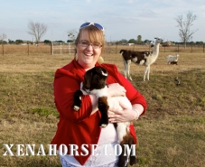 Fort Bend Herald reporter Jennifer Scott meets members of the Animal Encounter Therapy team, December 2014.