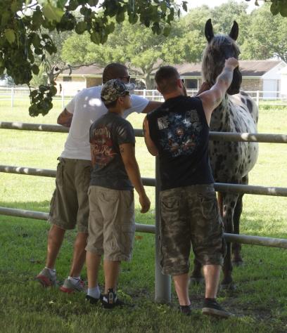 All Xena's Horses PTSD work photo 2