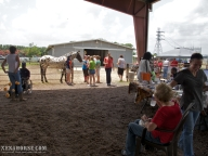 Approximately 150 people attended the first Wellness Day, June 29th. Wellness Day is a recurring event held in west Houston by All Xena's Horses.  These events are dedicated to bringing healthcare practitioners and educational resources for people and animals to the local area in an easily accessible, family-friendly environment.  Learn more and see the schedule for upcoming events at xenahorse.com.