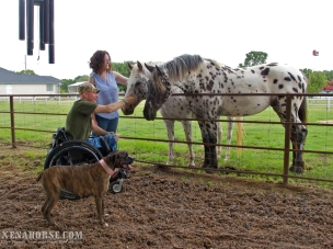 Navy veteran Frank Ellis and Wolfe's Barkery owner Alexandra Wolfe meet meet Xena and crew during Wellness Day, June 29th. Wellness Day is a recurring event held in west Houston by All Xena's Horses. These events are dedicated to bringing healthcare practitioners and educational resources for people and animals to the local area in an easily accessible, family-friendly environment. Learn more and see the schedule for upcoming events at xenahorse.com.