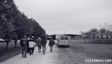 Executive Director Jan Shultis leads a group of visiting veterans to the main barn.