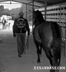 A volunteer from the Liberators Motorcycle Club leads a horse from the barn.