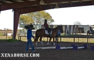 Air Force veteran Derrick Perkins rides in the main arena during a visit by KHOU Ch. 11 to The Xena Project in late November. The Xena Project is a veteran-operated 501(c )3 that facilitates healing for veterans and their families through equine and animal therapy; learn more at xenahorse.com