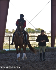 Air Force veteran Derrick Perkins rides in the main arena accompanied by trainer Jayne Lloyd, during a visit by KHOU Ch. 11 to The Xena Project in late November. The Xena Project is a veteran-operated 501(c )3 that facilitates healing for veterans and their families through equine and animal therapy; learn more at xenahorse.com